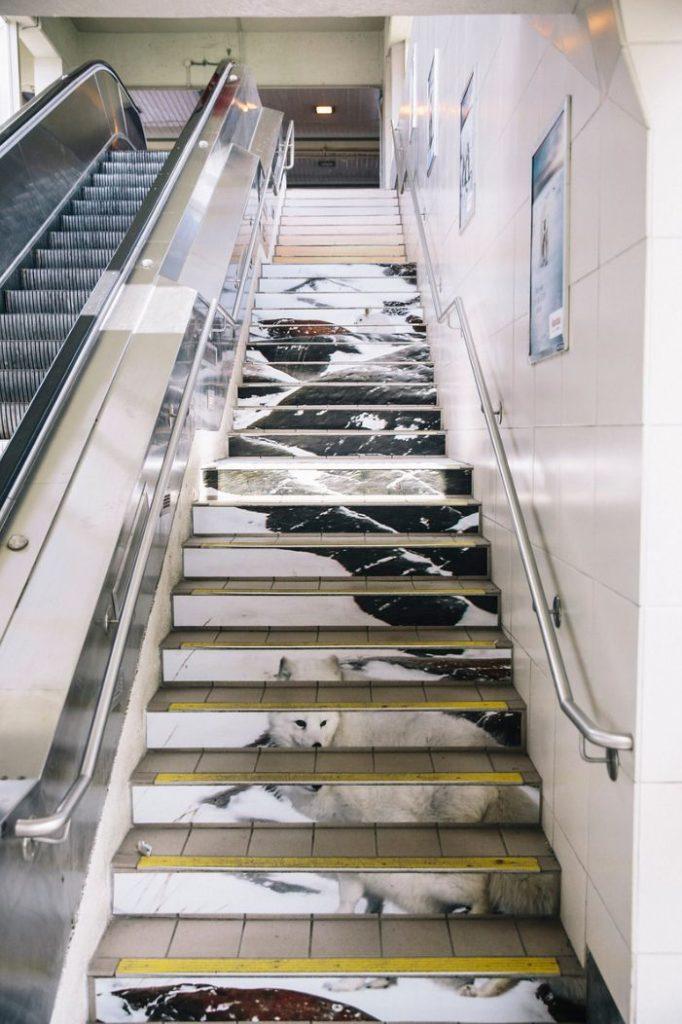 Arctic escalator
