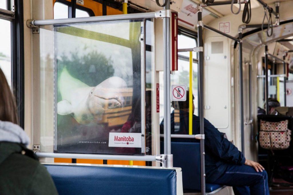 LRT interior Travel MB station domination beluga