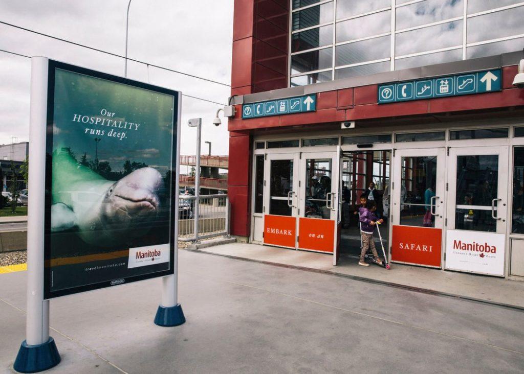 beluga outdoor station Travel MB