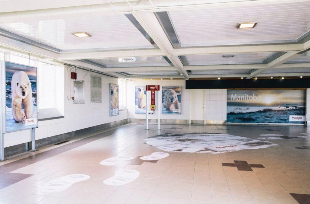 polar bear interior staiton wrap Travel MB