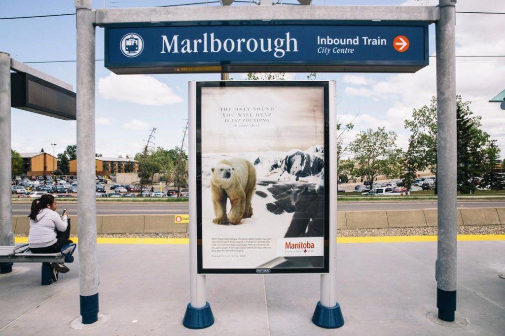 polar bear outdoor station Travel MB